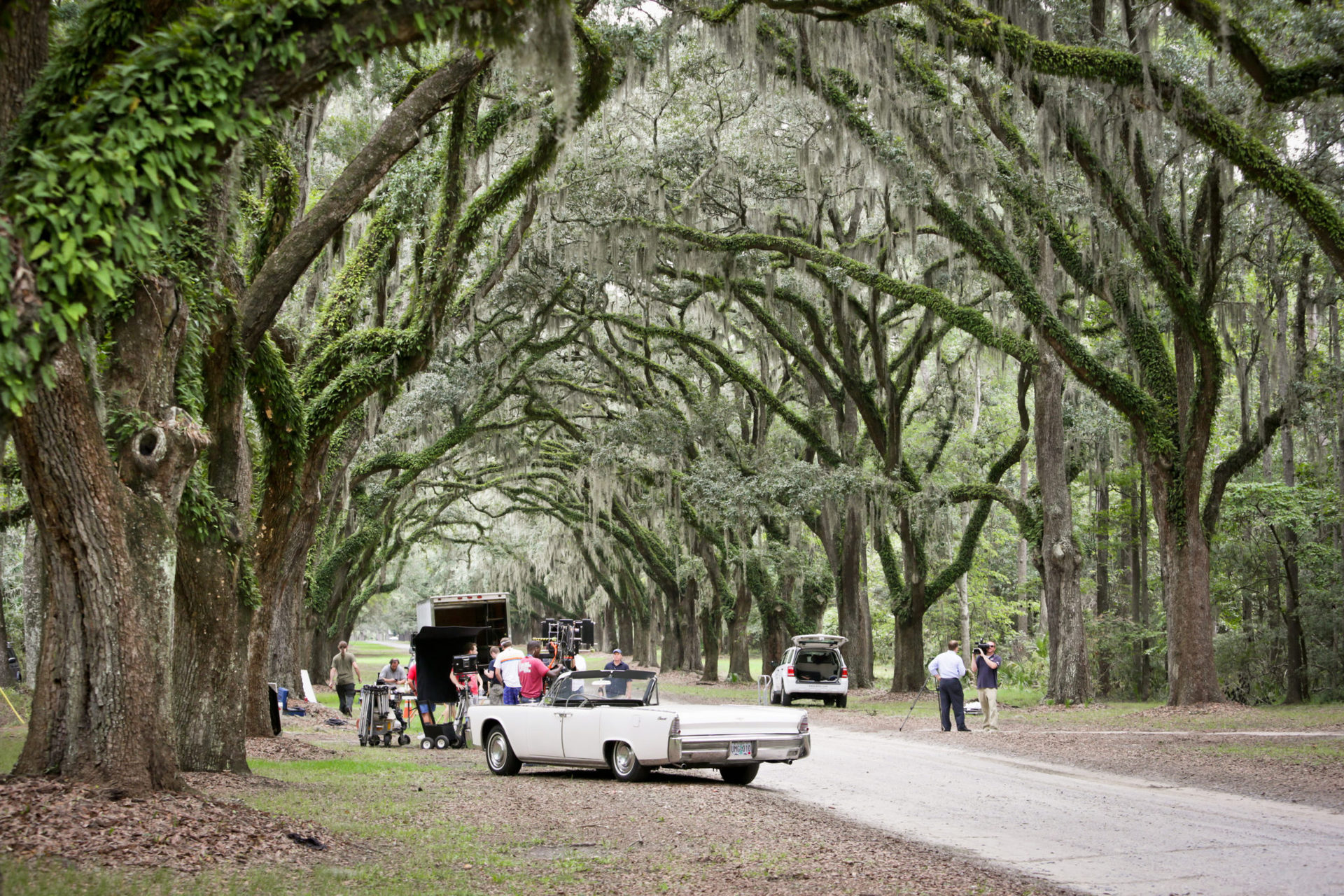 wormsloe-plantation-savannah-desires-of-the-heart